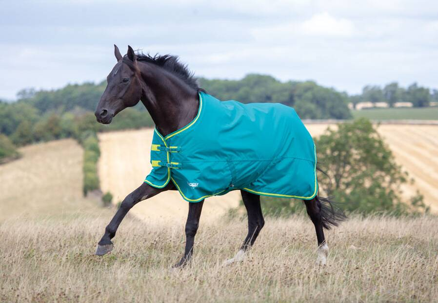 Shires Tempest Original 50 Turnout Rug (Colour Variations May Apply)