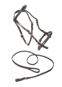 CALDENE BRIDLE IN HAND WITH LEAD REIN