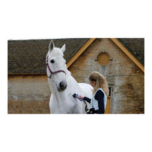Load image into Gallery viewer, LISTER LIBERTY HORSE CLIPPER YARD PACK PINK