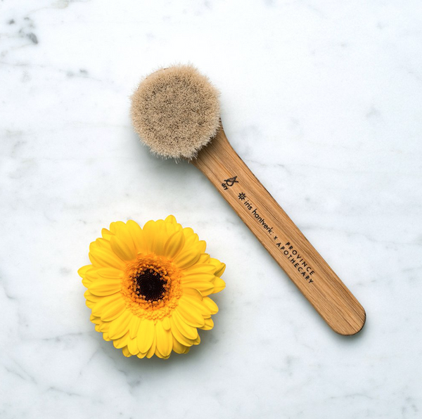 Daily Glow Facial Dry Brush - Verde