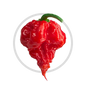 icon-carolina-reaper.png