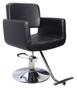 Model-648 Styling Chair