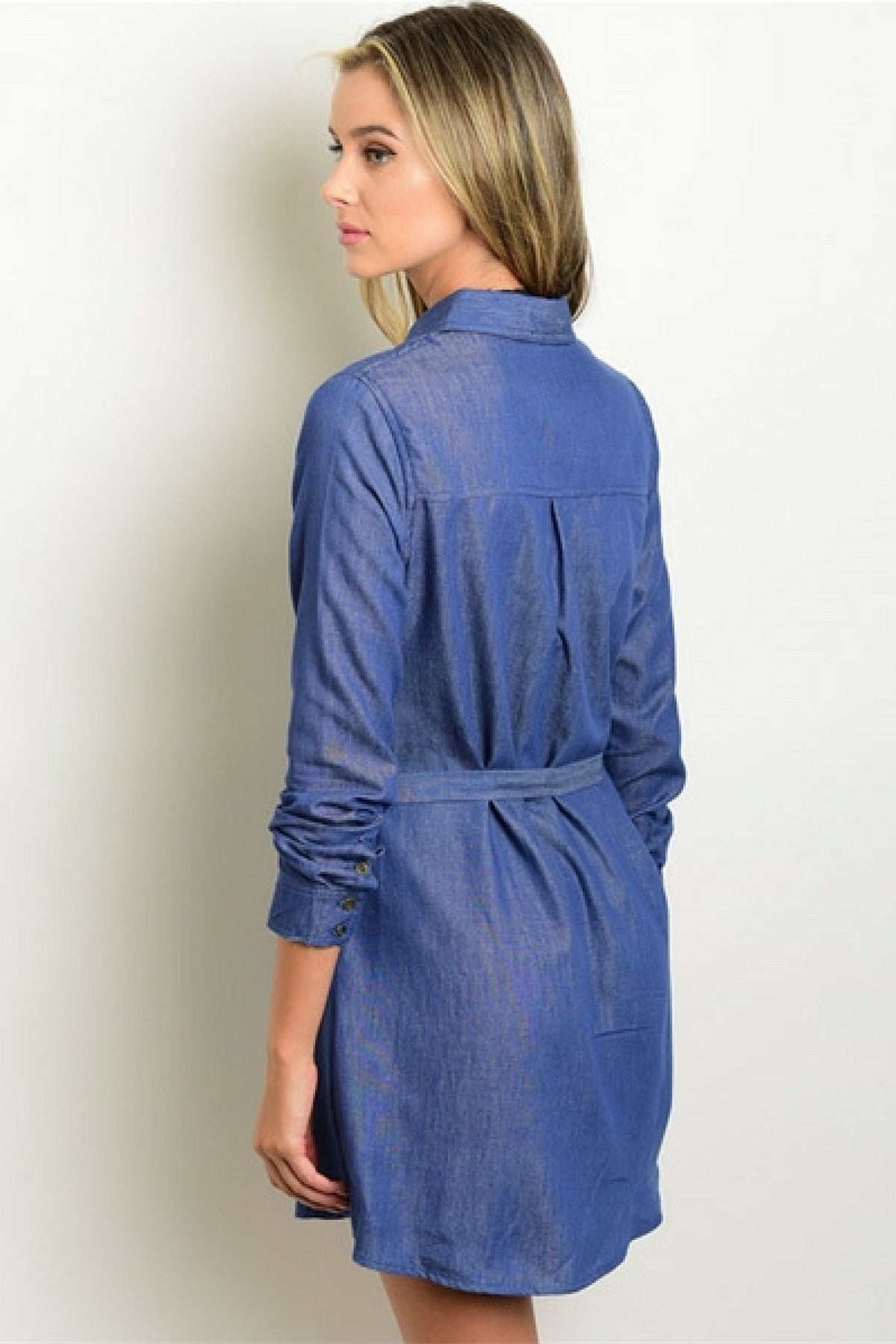 Denim Chambray Tie Dress - Leather and Sequins - 2