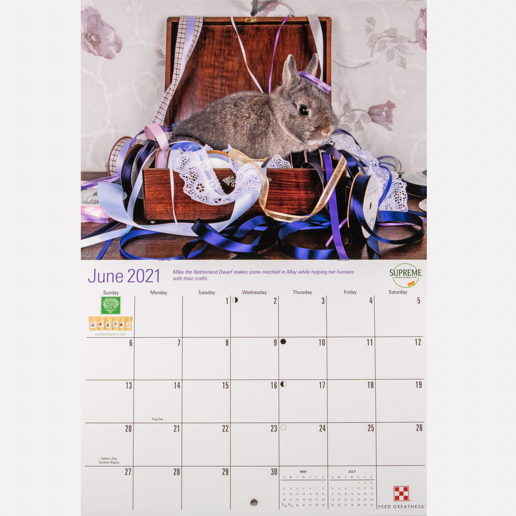2021 Rabbit Rescue Calendar - BinkyBunny.com House Rabbit Store