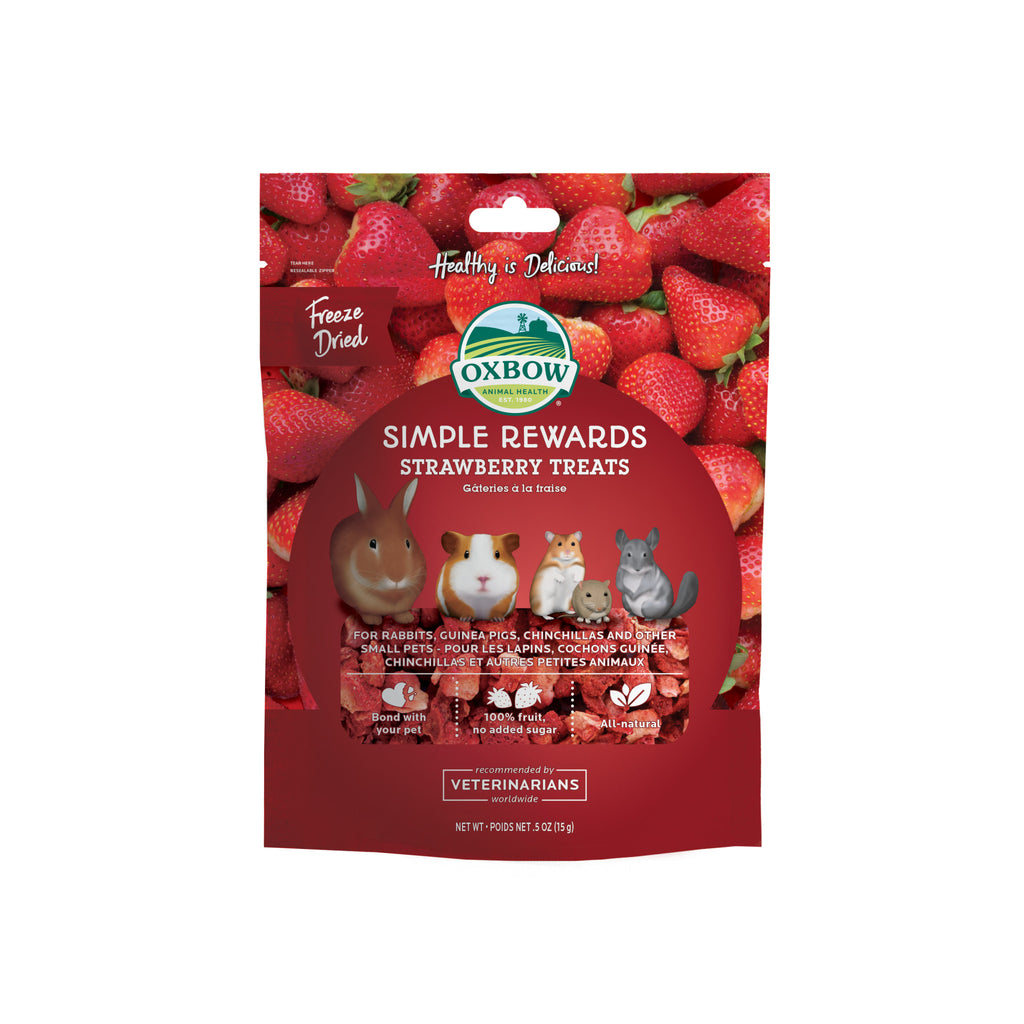 Simple Rewards Strawberry Treats - BinkyBunny.com House Rabbit Store