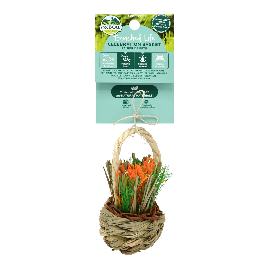 Celebration Basket (Enriched Life) - BinkyBunny.com House Rabbit Store