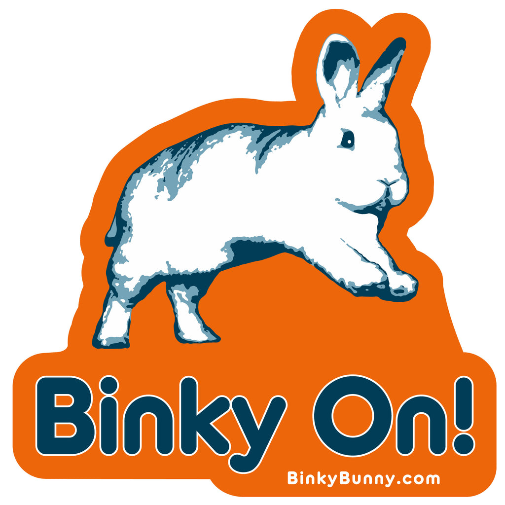 """Binky On"" Sticker - BinkyBunny.com House Rabbit Store"