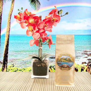 Medium Roast Maui Blend Coffee Beans in Resealable Kraft Bag with Old Lahaina Coffee logo