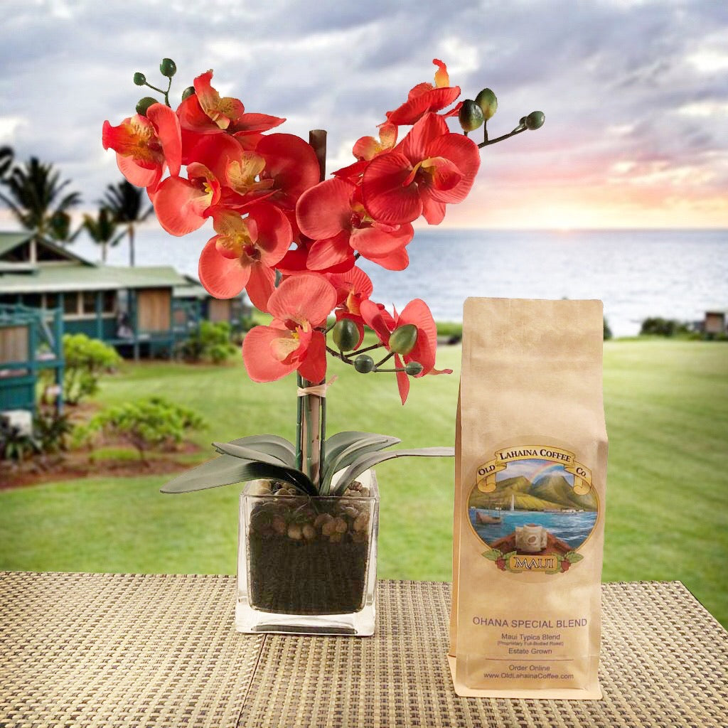 Ohana Special Dark Roast Coffee Beans in Resealable Kraft Bag with Old Lahaina Coffee logo