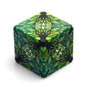 Shashibo Shape Shifting Box