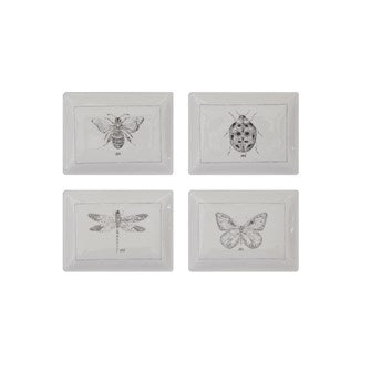 Insect Drawing Small Tray