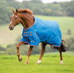 Shires Highland Plus 200g Winter Turnout Blanket