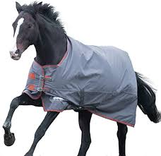 Shires Tempest 200 Winter Turnout Blanket