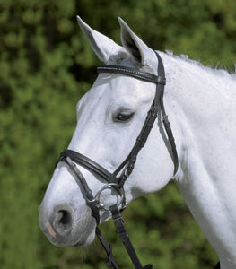 Waldhausen Diamond Bridle