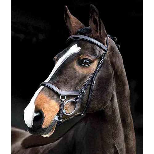 Rambo Micklem Competition Bridle-0