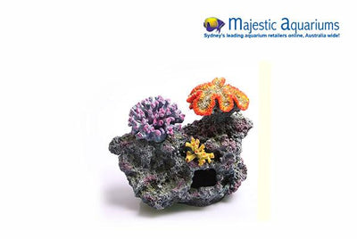 Copi Coral 3 Corals On Live Rock Large 35x18.5x25cm