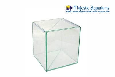 Aqua One Betta Divided Tank 20x20x20