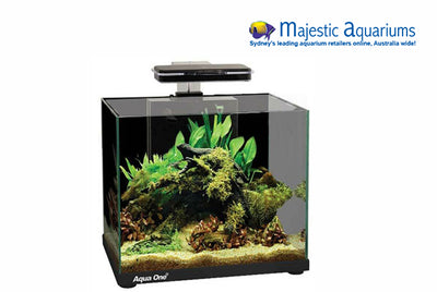 Aqua One Focus 25 Glass Aquarium 25L 40L X 25D X 31cm H (black)