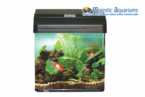 AquaStyle 380 34L Curved Glass Aquarium Gloss Black
