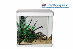 Aqua One LifeStyle 21 Complete Glass Aquarium 32cm 21L Gloss White