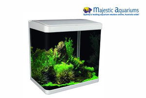 Aqua One LifeStyle 29 Complete Glass Aquarium 38cm 29L Gloss White