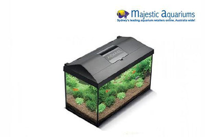 Aquael Leddy 75 Aquarium Set Black