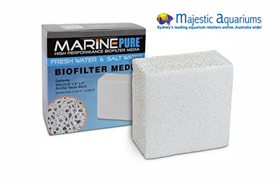 MarinePure 8x8x4 in Block