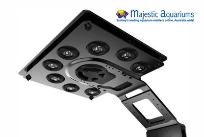 Maxspect Ethereal LED Lighting System without ICV6 Controller