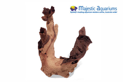 Mopani Large Drift Wood