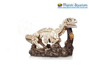 Ornament Dinosour Skeleton 25x9x16.5cmh