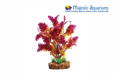 Plastic Plant Purple Wisteria W Gravel Base M