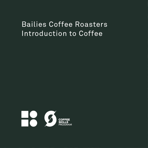 Introduction To Coffee - Bailies Coffee Roasters