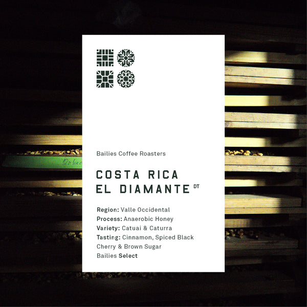 Costa Rica El Diamante // Bailies Select Microlot - Bailies Coffee Roasters