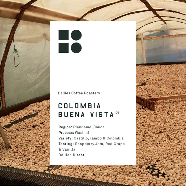 Colombia Buena Vista 250g Roast Date 07/10/19 - Bailies Coffee Roasters