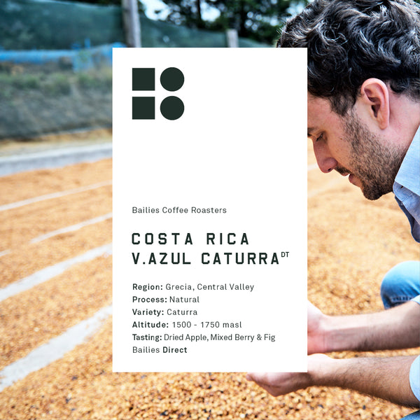 Costa Rica Volcan Azul Caturra 250g Pre-Order for Roast Date 19/11/18 - Bailies Coffee Roasters