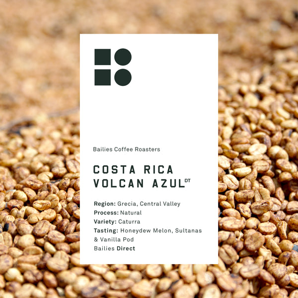 Costa Rica Volcan Azul Caturra Microlot - Bailies Coffee Roasters