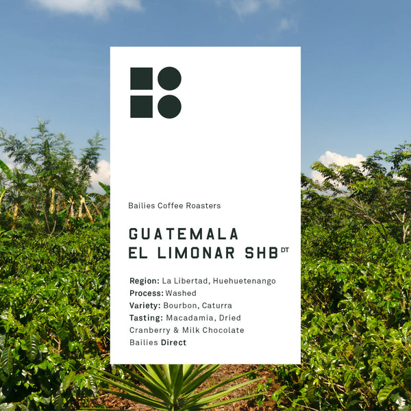 Guatemala El Limonar Strictly HB - Bailies Coffee Roasters