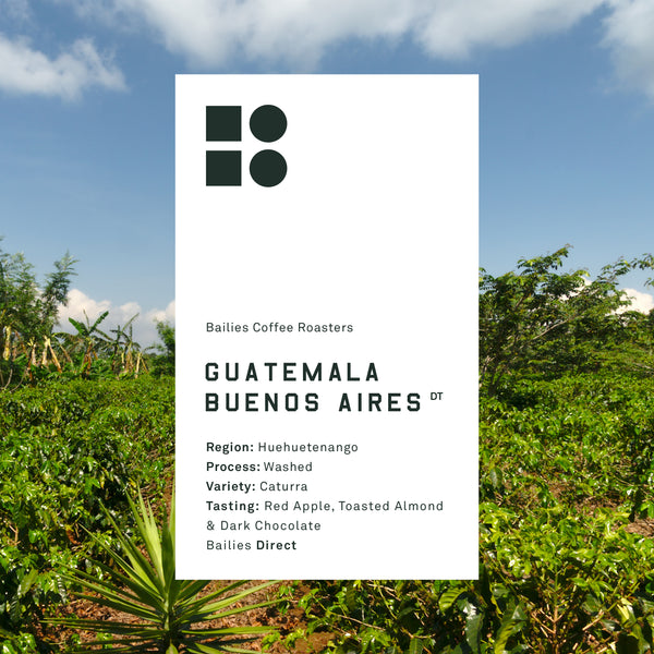 Guatemala Buenos Aires Huixoc Washed - Bailies Coffee Roasters