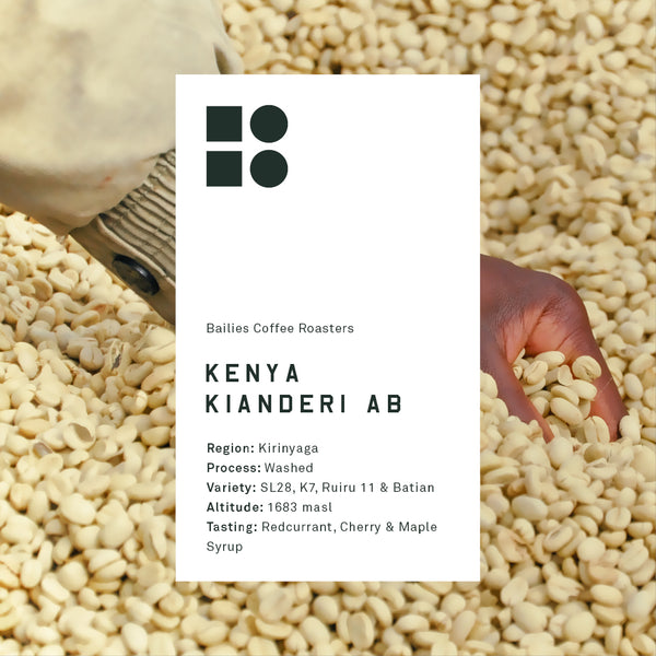 Kenya Microlot Single Origin Washed Filter Coffee