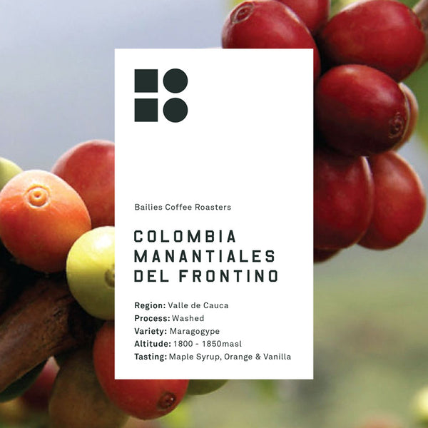 Colombia Manantiales Del Frontino Maragogype 250g Roasted 20/06/2017