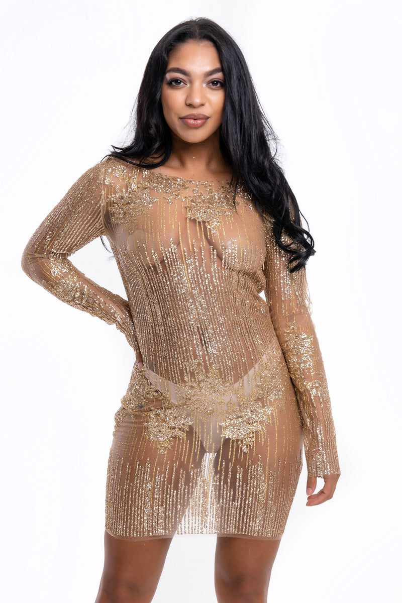 Gold Glitter Sheer Mini Dress - Mirror Image Style