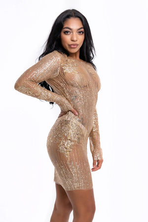 Gold Glitter Sheer Mini Dress