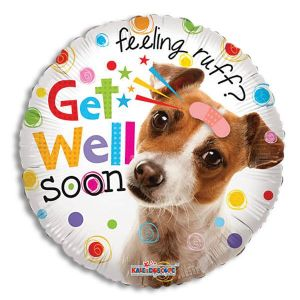 Feeling Ruff? Get Well Soon