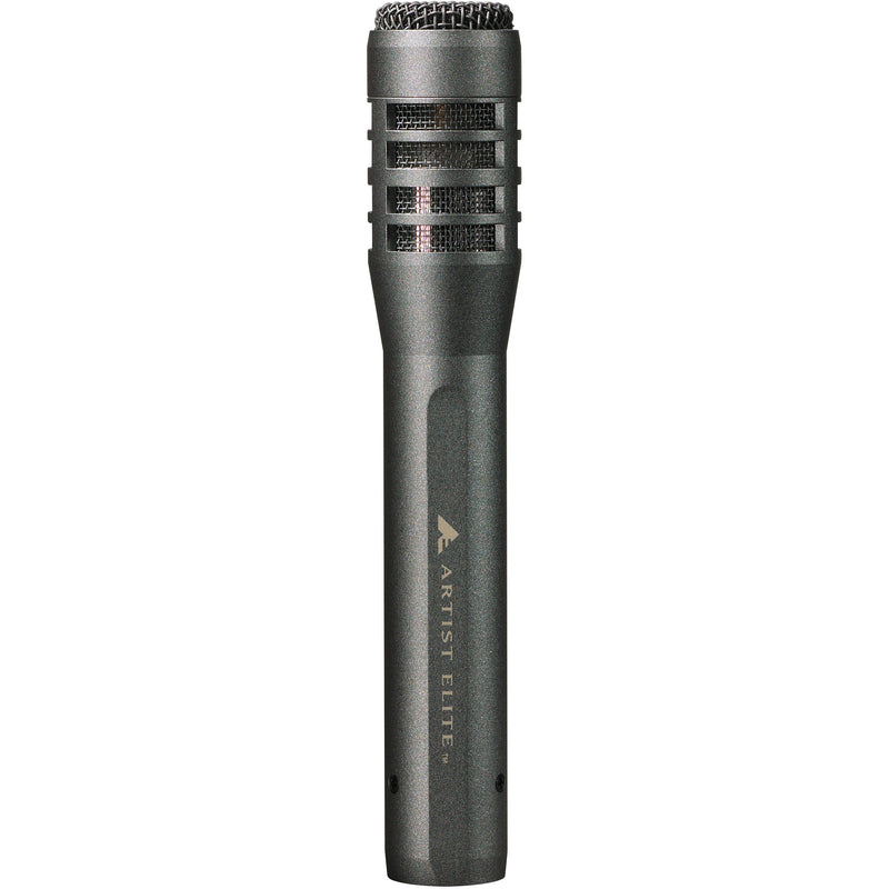 Audio-Technica AE5100 - Large-Diaphragm Cardioid Instrument Microphone