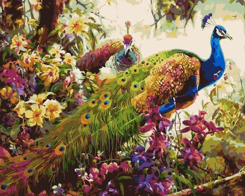 Peacock Family Painting by Numbers - Paint by Numbers Kits