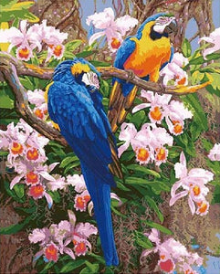 Beautiful Parrots & Pink Flowers Painting - Paint by Numbers Kits