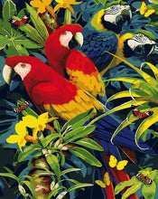 Load image into Gallery viewer, Beautiful Parrots DIY Painting by Numbers - Paint by Numbers Kits