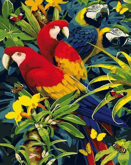 Beautiful Parrots DIY Painting by Numbers - Paint by Numbers Kits