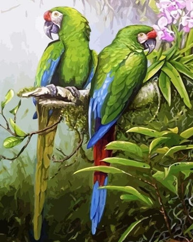 Beautiful Green Parrots DIY Painting by Numbers - Paint by Numbers Kits