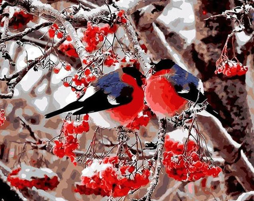 Beautiful Birds - An Attractive Painting by Numbers - Paint by Numbers Kits